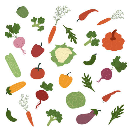 Set of vegetables. Fresh organic vegetable in cartoon style vector isolated on white background. Harvesting season for natural products