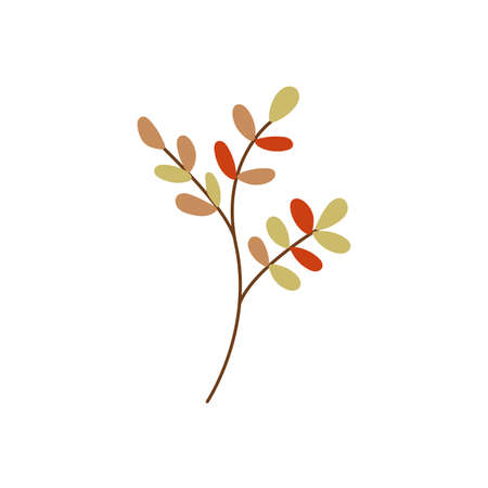 Autumn twig with colorful leaves vector flat illustration. Elegant simple branch isolated on white background