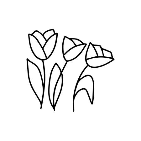 Three Tulips black and white vector isolated illustration in doodle style, flower, holiday gift, spring and summer season. Hand drawn bouquet