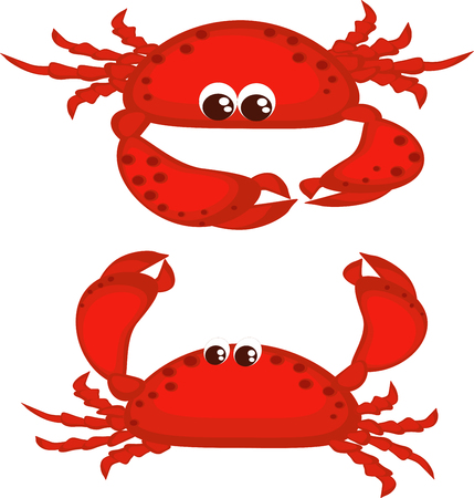Two red crabs. Vector
