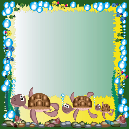 green sea turtle: Frame with turtles.