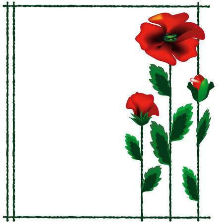 Frame with poppies. Vector