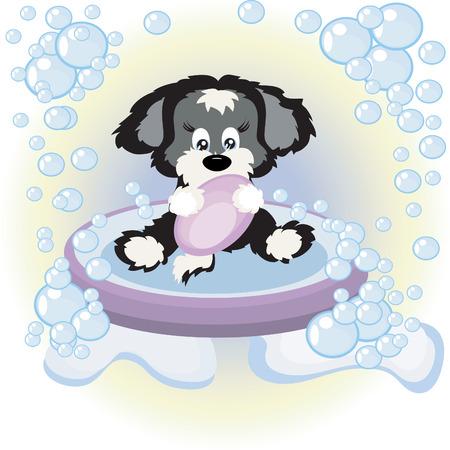 Puppy in the bathroom Stock Vector - 8075134