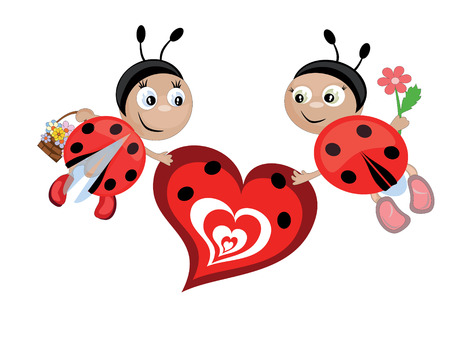 Insects and heart