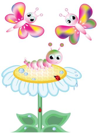 oruga: Insectos