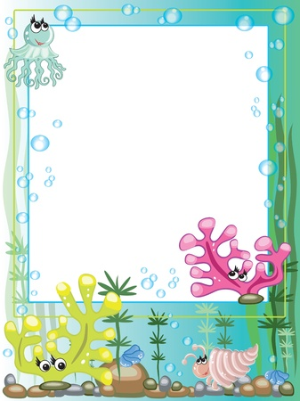bubble sea anemone: Sea frame