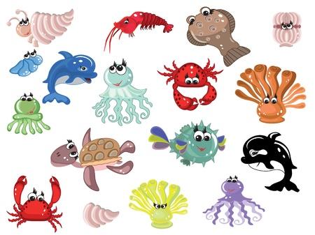 Sea animals,set photo