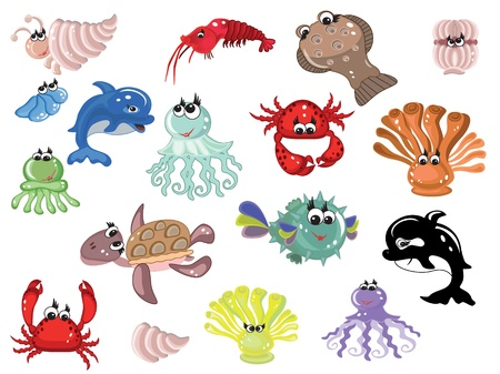 jelly fish: Sea animals,set