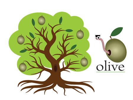 Olive tree Stock Vector - 9953022