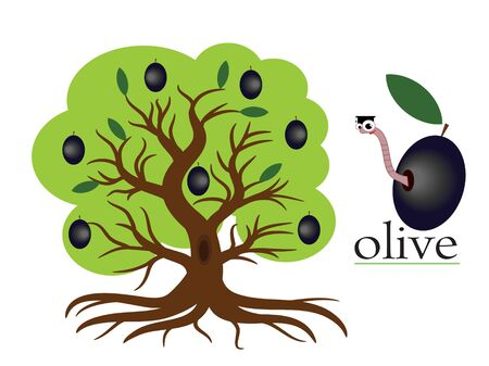 Olive tree Stock Vector - 9953023