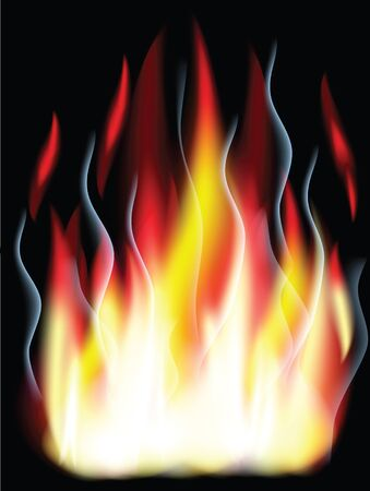Fire on the black background,used mesh.. Stock Vector - 9982615