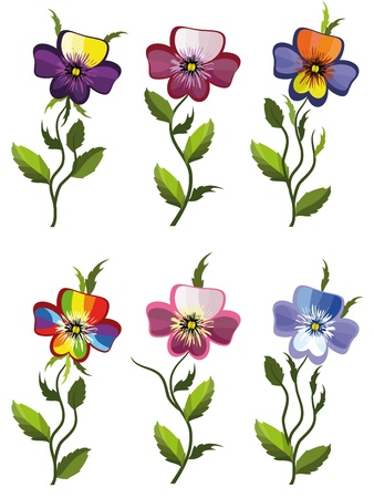 an inflorescence: Pansies