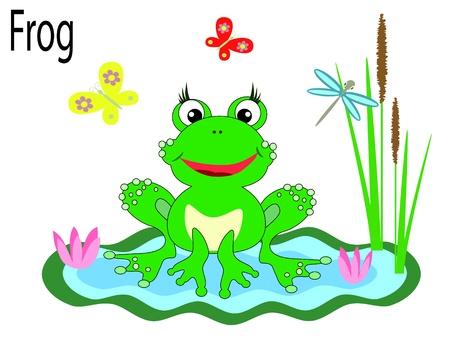 Vector animals,frog Vector