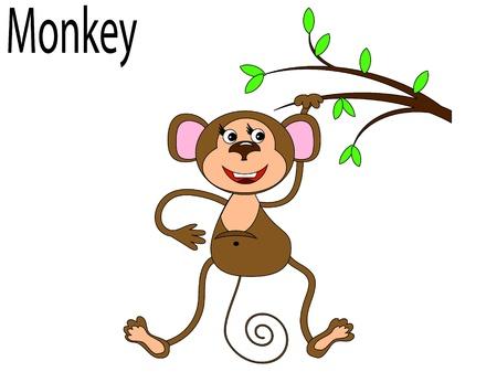 Vector animals,monkey