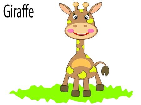 Vector animals,jiraffe Vector