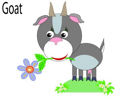 Vector animals,goat Stock Vector - 10203780