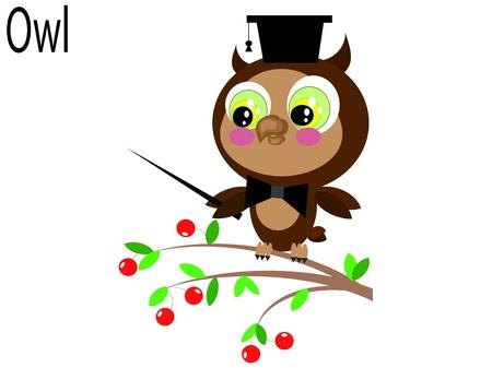 owl Stock Vector - 10281229