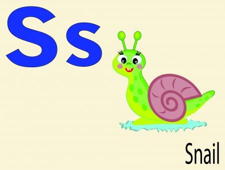 caracol: Alfabeto animal s