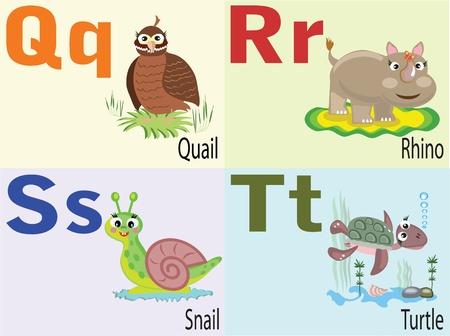 q: Alfabeto animale Q, R, S, t. Vettoriali