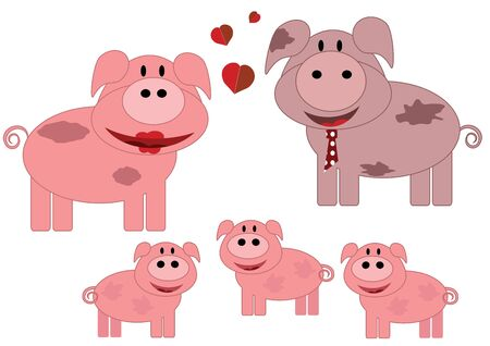 young pig: Pigs family Illustration