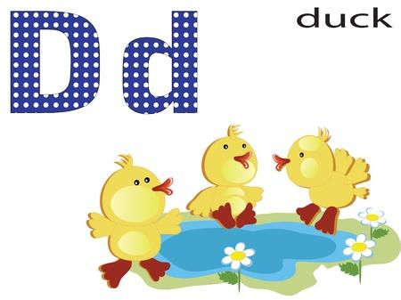Children alphabet , D. Stock Vector - 11654855