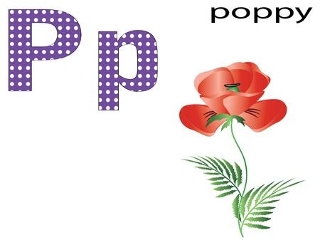 Children alphabet,P Vector