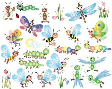 oruga: Establecer los insectos