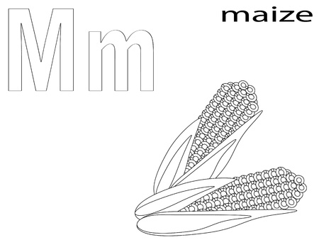 maize: Coloring Alphabet for Kids, M