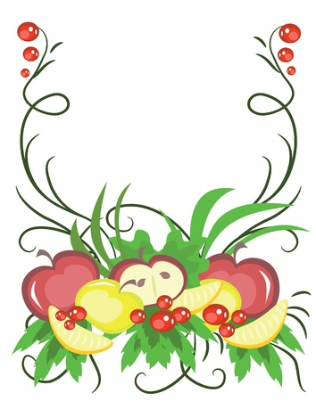 Fruits, vector. Illustration