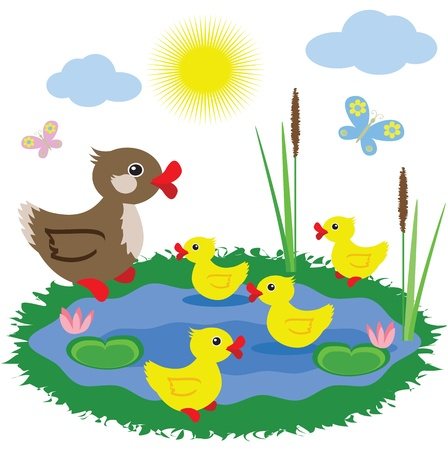 Pond with ducks Illustration