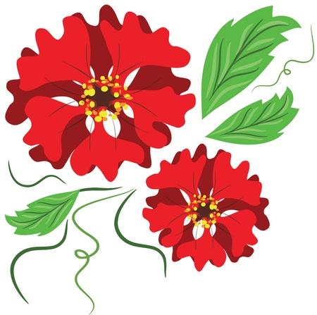 abloom: Red flowers Illustration