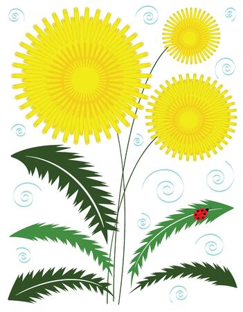 Dandelion Stock Vector - 16974117