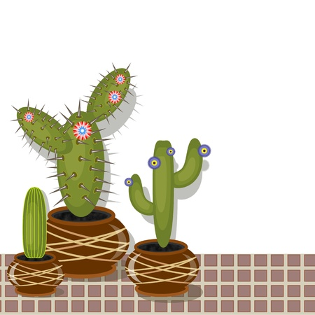 Cactuses in the pot  Vector