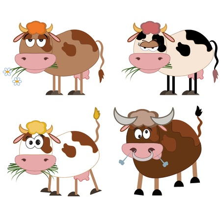 cow tongue: Cows and bull , cartoon Illustration