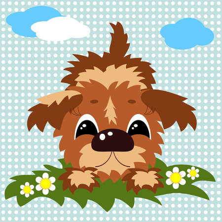 lap dog: Puppy   Vettoriali