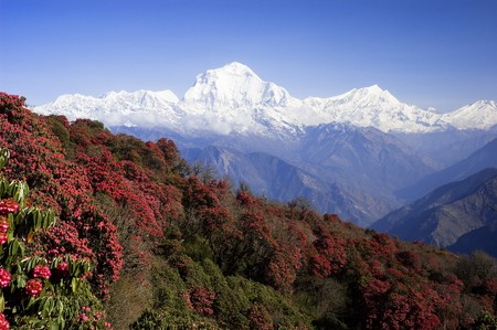 Annapunna Range, Nepal Stock Photo