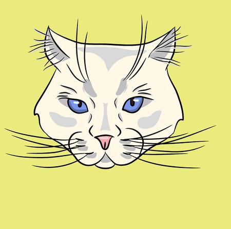 blue eyes: White cat with a blue eyes Illustration