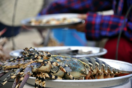 Lobsters waiting to be served at the Beach in Nha Trang in Vietnam Stock Photo