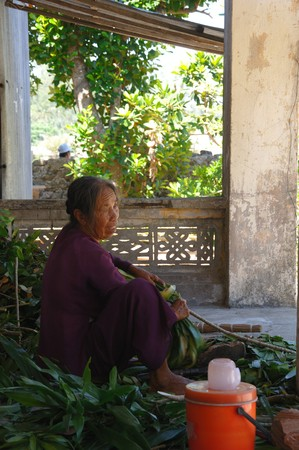 Unidentified nun prepares medical herbs on July 11, 2010 at Cham Island outside Hoi An, Vietnam. Stock Photo - 8194278