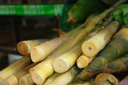 Bamboo shoots at the Lamdin Market, Chaweng, Koh Samui, Thailand