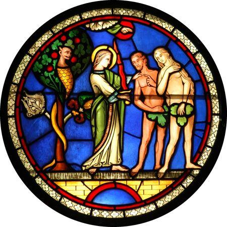 genesis: Adam & Eve (Genesis 2)