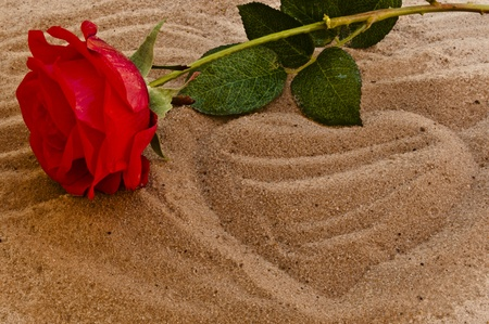 heart on the sand: Red rose on the beach with a heart in the sand