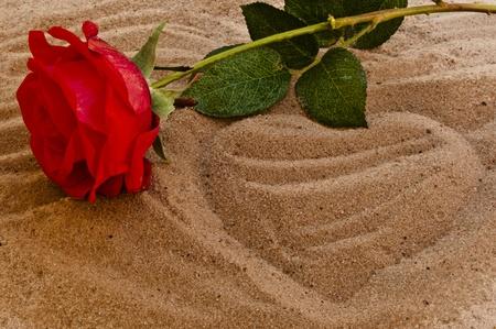liefde: Rode roos op het strand met een hart in het zand Stockfoto