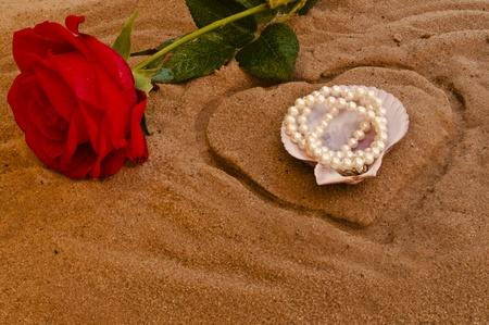 Red rose and pearls in a sea shell on a golden beach photo