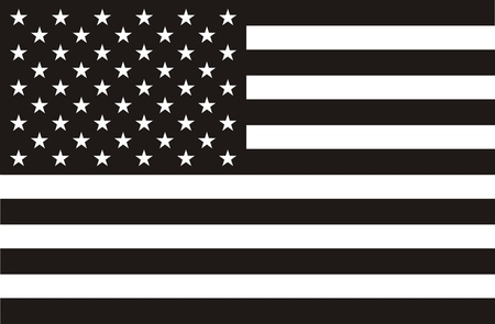 president of the usa: Black and white American flag