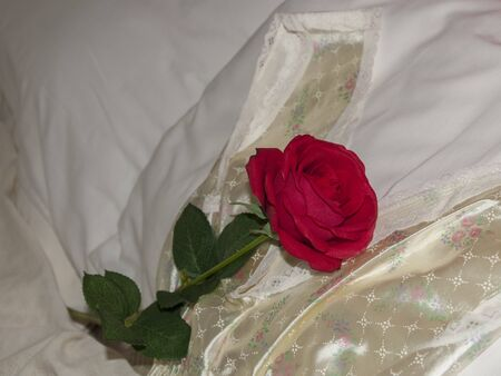 Loving red rose on pillows with a nightdress