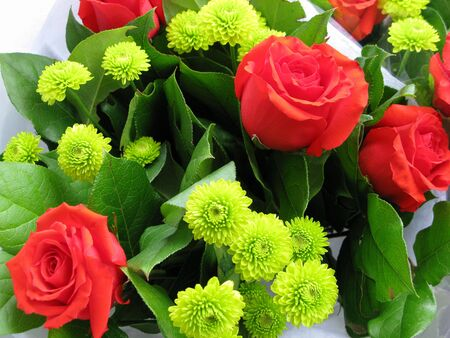 jeune: Red Roses with yellow shasta daisies