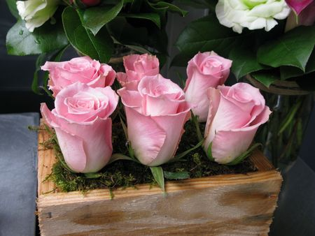 Pink roses in a wooden box