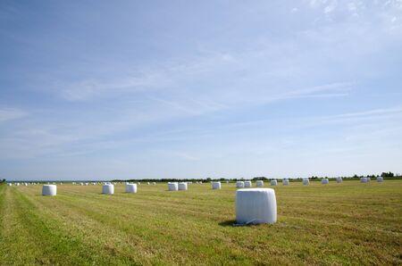 Plastic bales Stock Photo