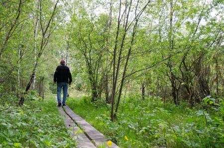 Wooden pathway Stock Photo - 14087213